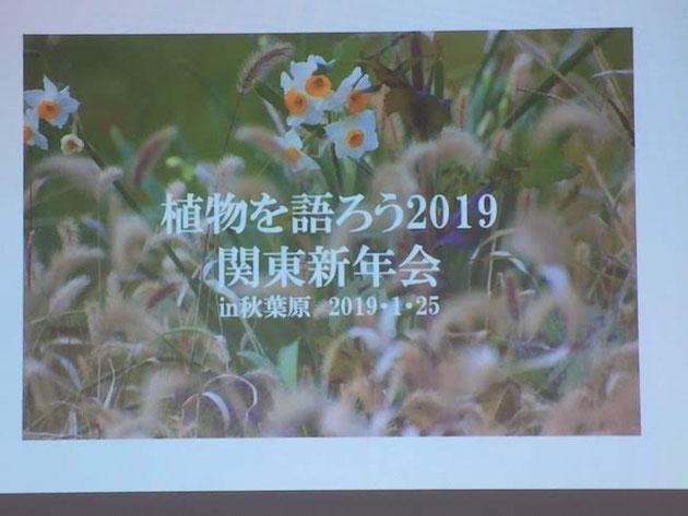 秋葉原にお邪魔して植物を語ろう2019関東新年会に参加させて頂きました!