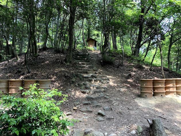 東谷山の中に不自然に出来上がった丘。これは古墳だったのか!