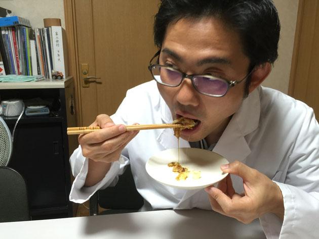 オクラの花を食べるガーデンドクター柴ちゃん。