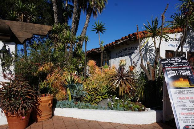 庭文化の発展はそこに植えられる植物の性質に大きく関係すると言うのが肌で実感できる植栽だ