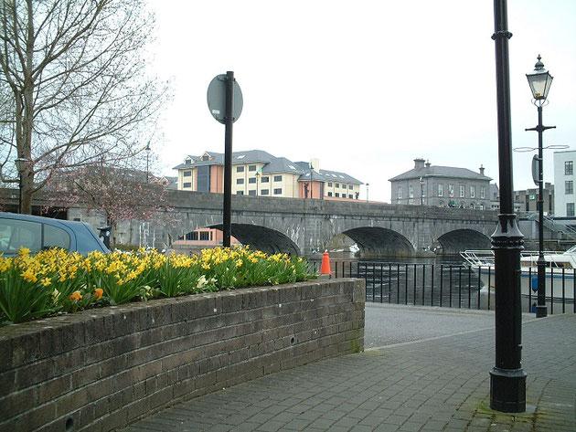 こんな風に町中にスイセンの花があふれるアイルランドのダブリン。
