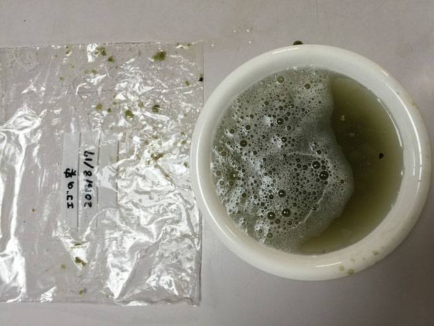 皿の表面には白い泡が。これが石鹸のかわりになるのか?