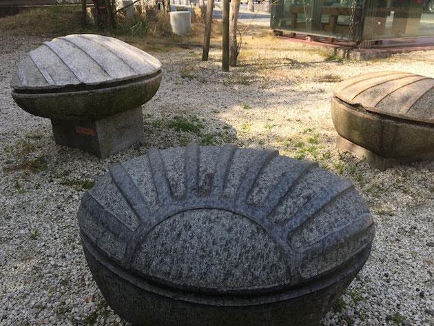 大山田サービスエリアで見つけた巨大ハマグリ