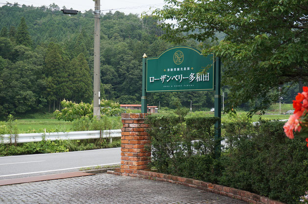 朝の庭園見学は滋賀県にあるローゼンベリー多和田!