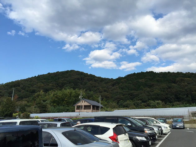 これが名古屋で一番高い山、標高198.3m!その麓に東谷山フルーツパークがある。