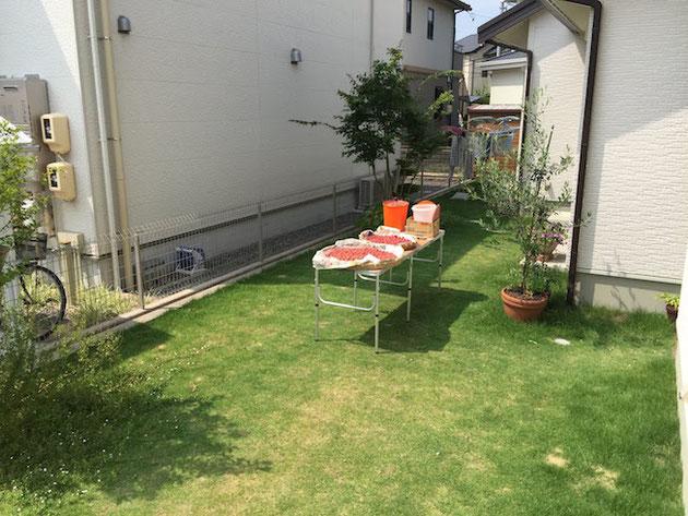 お庭に台を置いて梅干しを干す!昔は当たり前にあった光景。