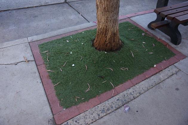 植木の足元にあった人工芝 幹回りはしっかりとカットして施工されている
