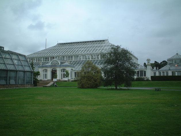 こちらもキューガーデンにあるグラスハウスの温室。