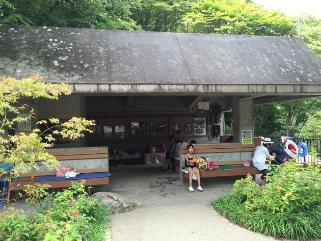 少し大きな鉄筋コンクリート造の休憩施設。