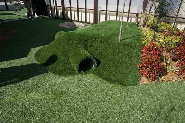チワワ6匹飼っておられるお客様のドッグガーデン。ワンちゃんの健康を考えた庭作りも参考になる。