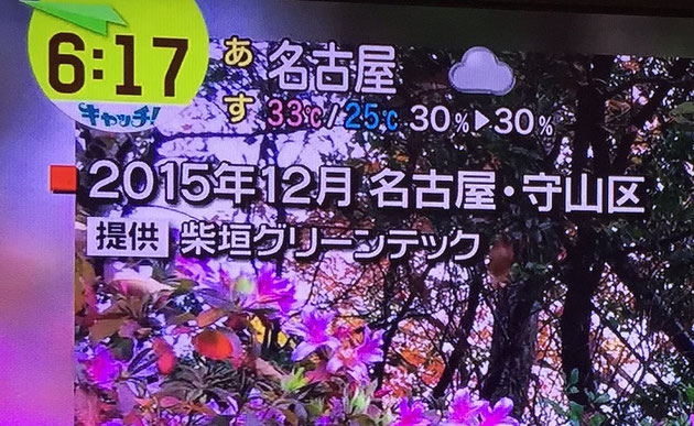 「提供:柴垣グリーンテック」とテレビで使われた写真の左上に書かれていました!