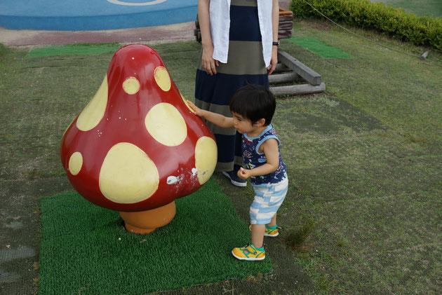 触ると小さな子供でも少し動く巨大キノコ。息子よ、大きくなるんだよ。まだ小さくていいけど。