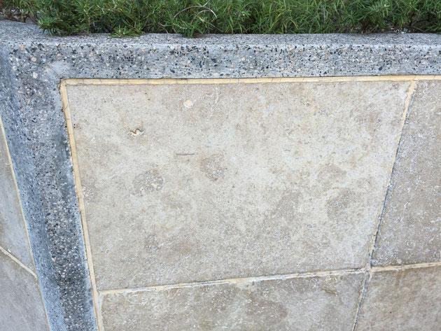天然石(トラバーチン)を壁に貼ってある。縁取りの現場打ちテラゾ仕上げとの相性がとても良い。