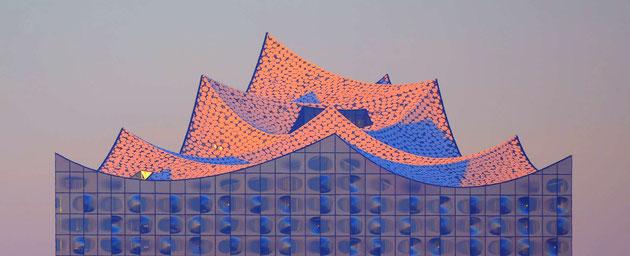 Projektmanagement - Sonnenaufgang in der Hafencity , Dach der Elbphilharmonie