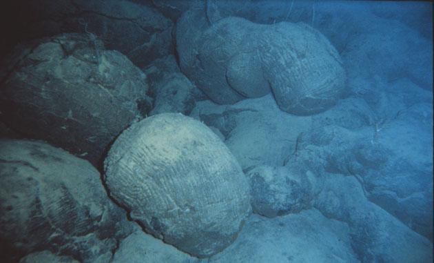 Basaltes en coussin visibles au niveau de la dorsale Atlantique. Source: wikipédia.