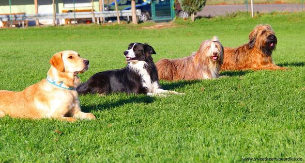 So und hier das typische Gruppenfoto :-)