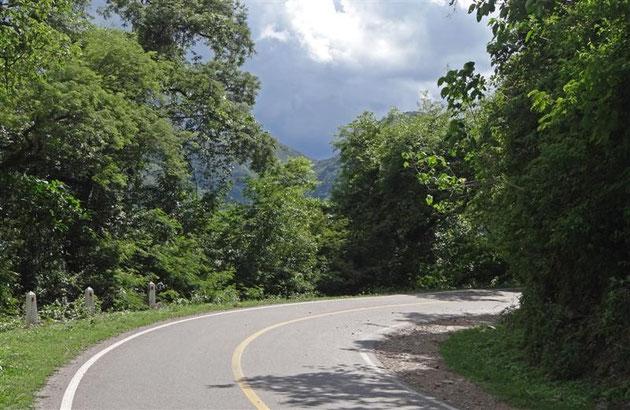Zum Regenwald gehört halt auch der Regen. Wir waren aber schneller und sind ihm davon gefahren