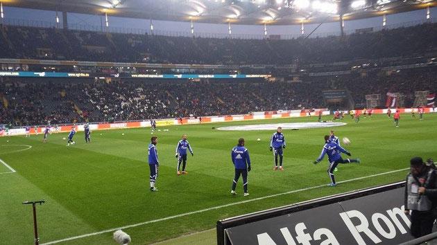 海外サッカー観戦 シャルケ