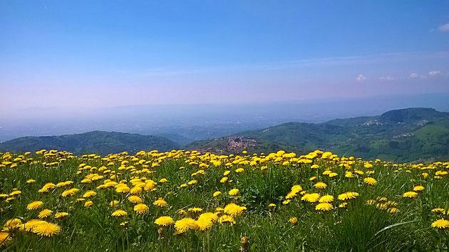 Panorama Di Conco Altopiano dei Sette Comuni
