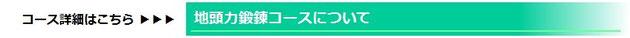 京橋、城東区蒲生の個別指導塾アチーブメント、地頭力鍛錬コースについて