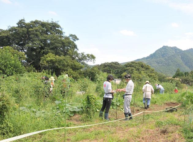 農業体験 自然栽培 野菜作り さとやま農学校 首都圏