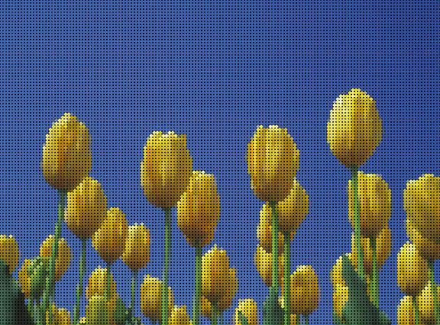 pic_a027-Pintinize.jpg