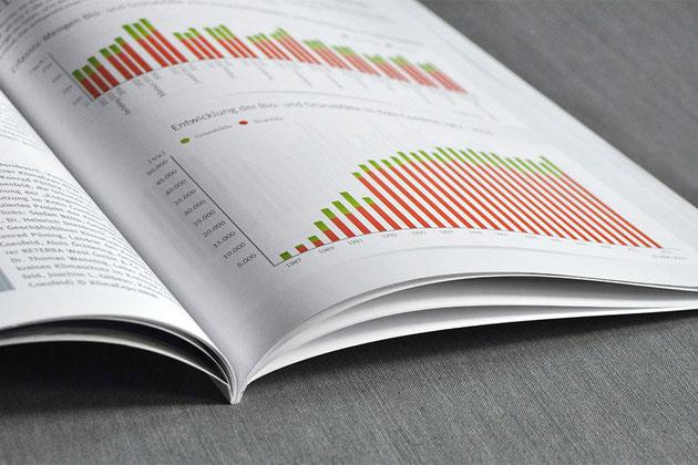 Geschäftsberichte - gestaltet und Gedruckt von der Druckerei SATZDRUCK aus Coesfeld (NRW)