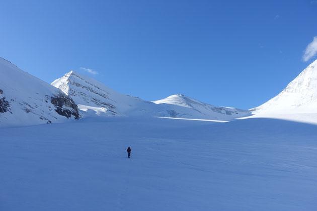 Skitour, Skihochtour, Turtmanntal, Brunegghorn, Turtmannhütte, Brunegg Gletscher