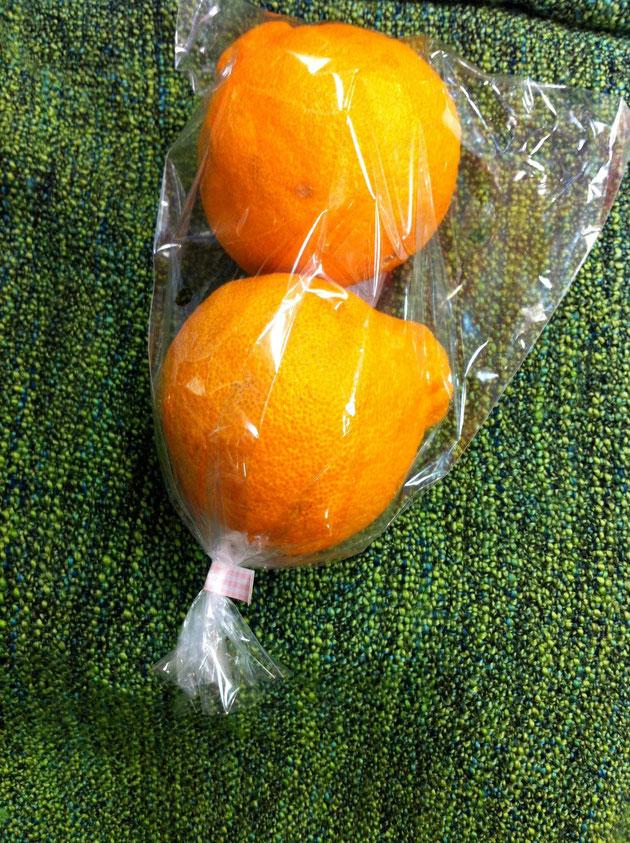 船橋 東武百貨店 八百屋 野菜 果物 フルーツ 通販 丸あ商店