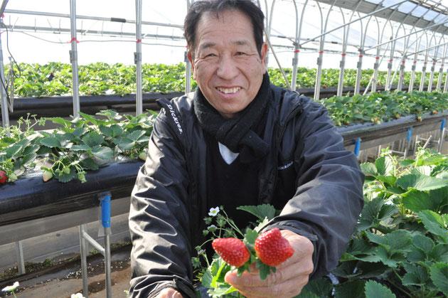 秀じい農場 イチゴ