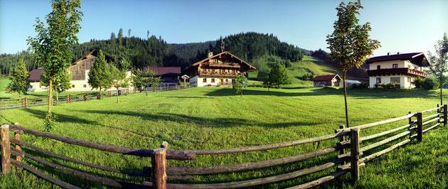 Lage Steinbachgut Flachau - Urlaub am Bauernhof