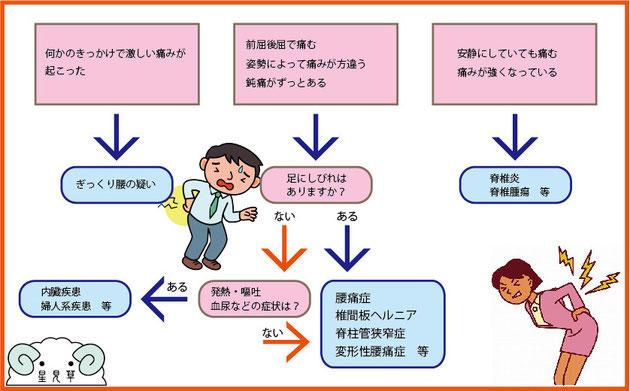 金沢市ほしみぐさの簡単腰痛チェック