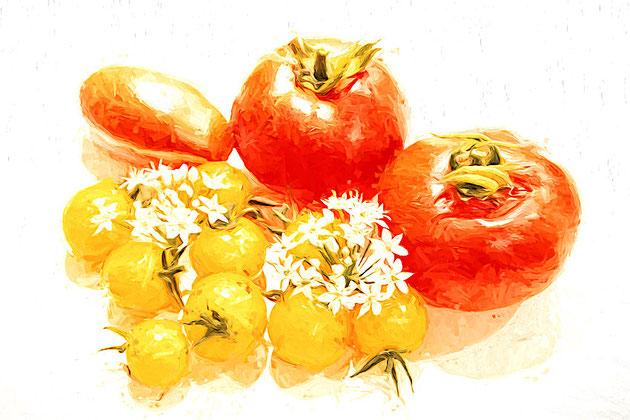 Tomaten mit Knoblauchblüte