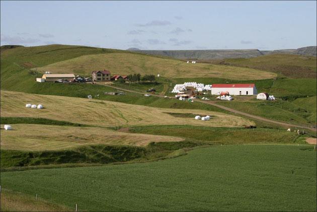 Ein isländischer Bauernhof