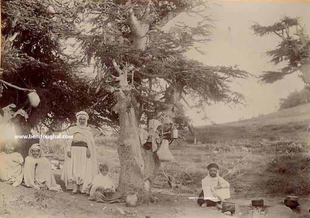 babors 1906