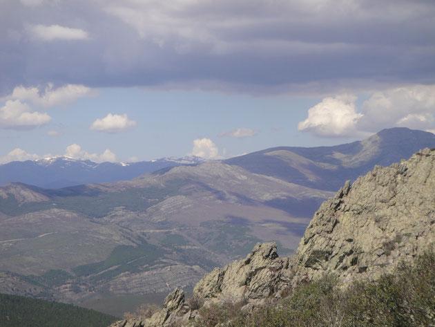 Pico del Lobo al fondo