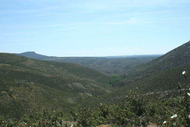 Pasomalo y al fondo La Bodera, desde el Alto de Valdepérez