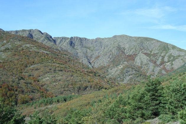 Pico de la Buitrera y Alto de Cevurnalillo