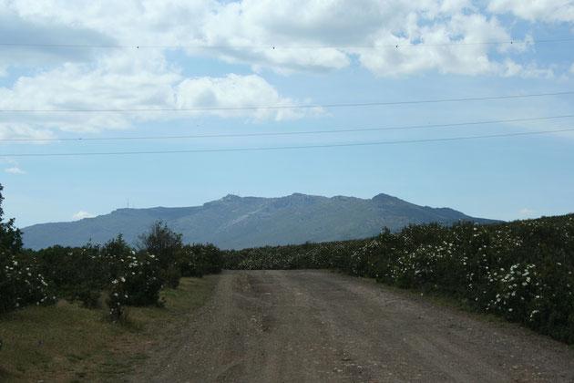 Sierra del Alto Rey