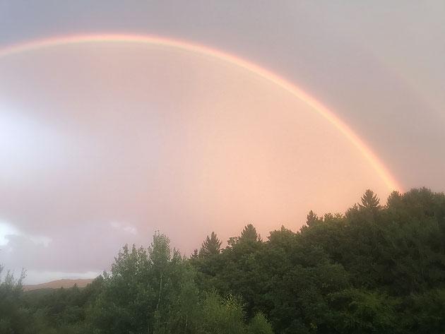 Regenbogenkraft