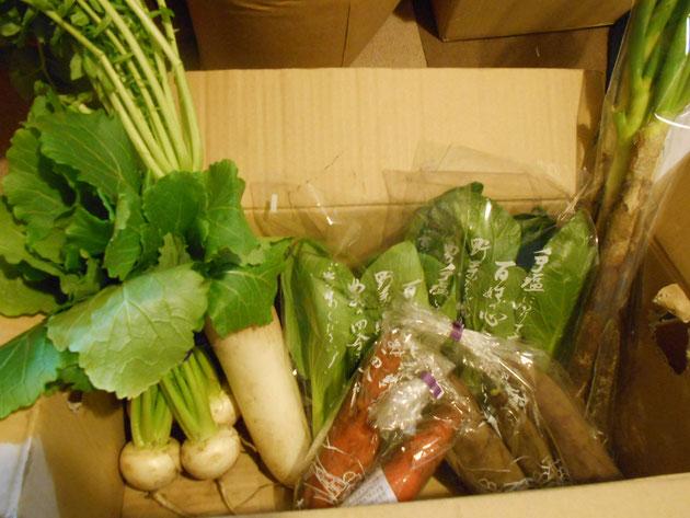 例)大根、カブ、人参、小松菜、チンゲン菜、長ネギ、サツマイモ