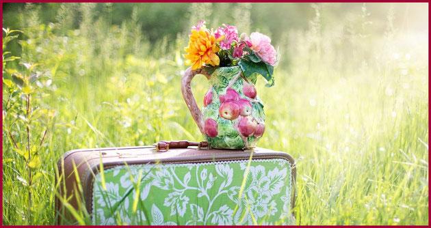 Valigia verde con vaso di fiori in un prato verde