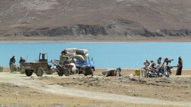 Travaux des champs sur les rives du Yamdrok-sto