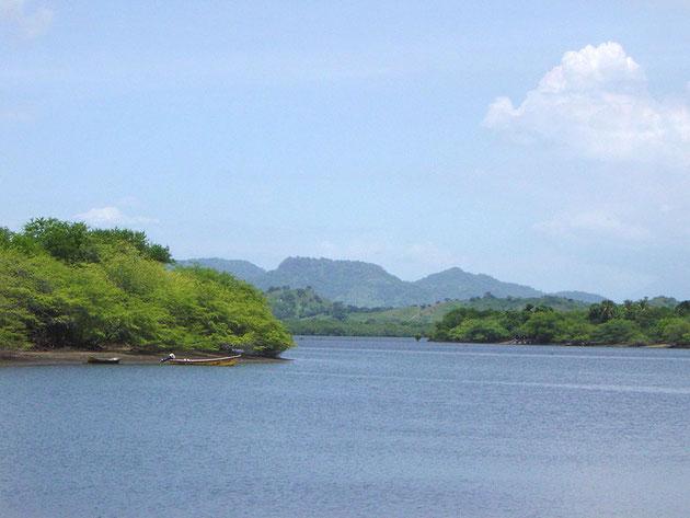 Vue sur une des baies de la mangrove