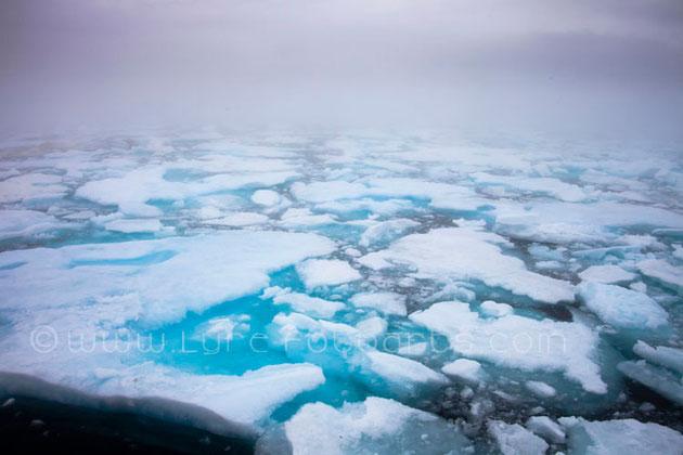 2009.07.22 - Nordkanada, Eisfeld  (NW-Passage, Ice Field)