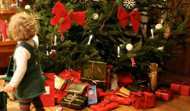 Luisenau Weihnachten