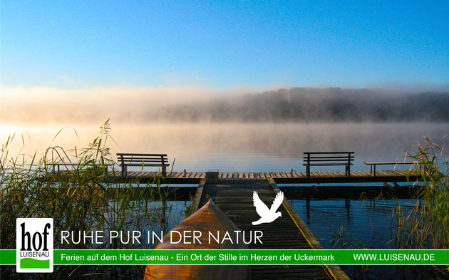Ferienwohnungen in der Uckermark am See