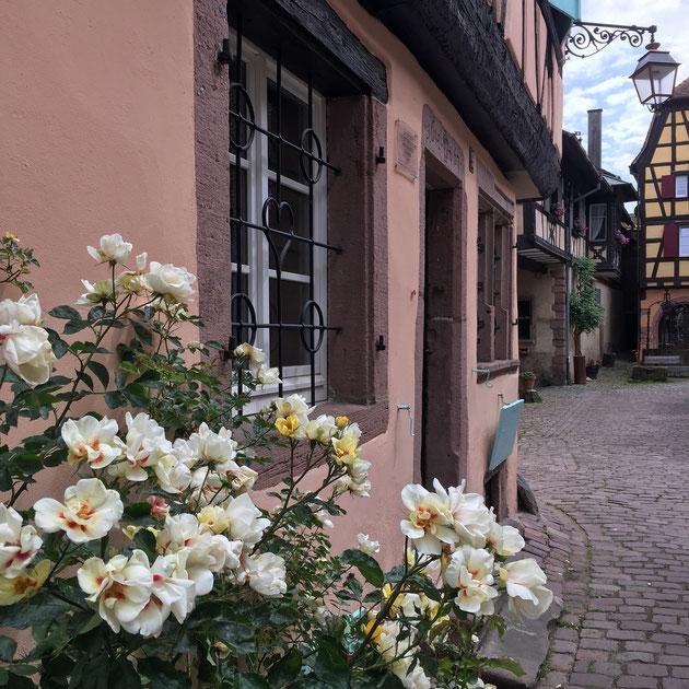 Les couleurs c'est la vie ... la vraie Vie - rue de la Couronne à Riquewihr
