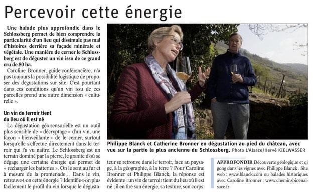 Les visites de terroir - visites géo sensorielles en Alsace vous sont proposées toute l'année - Article paru dans les Dernières Nouvelles d'Alsace, Dimanche 25 Avril 2021 - www.cheminsbioenalsace.fr