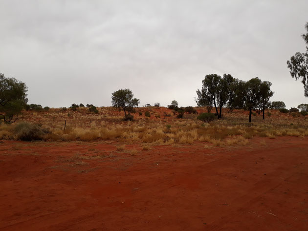 Rote Erde Outback